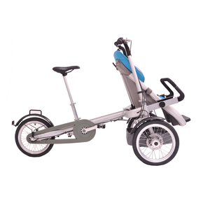Hot Bicycle Children Trailer And Baby Products Fat Bike Jogger 2 In 1 For Bicycle/Bike