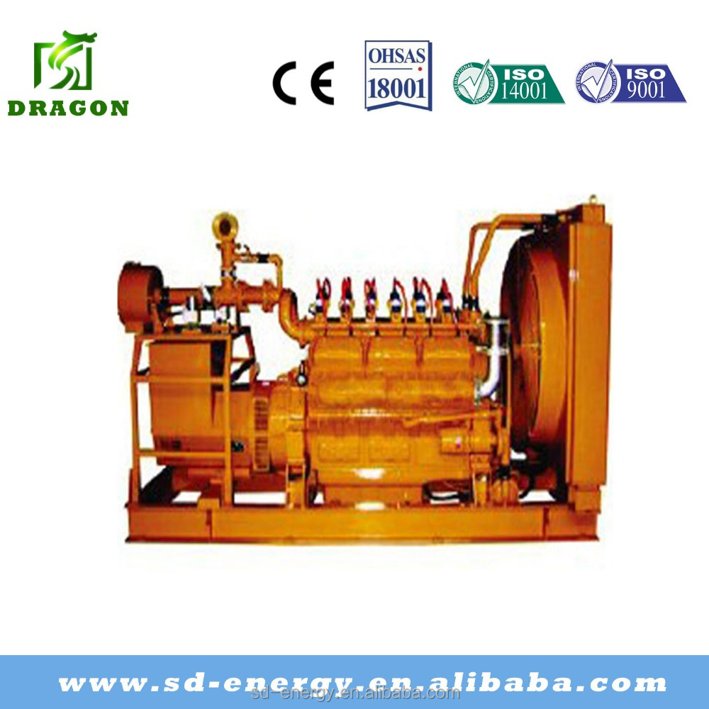 Power generator set natural gas,AC three phase produce electricity machine for Afghanistan market