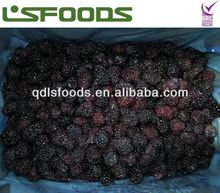 2013 Chinese IQF frozen blackberry