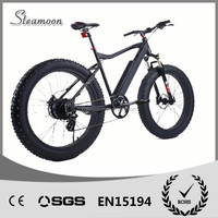 Powerful fat tyre 500w hub motor electric mountain bike