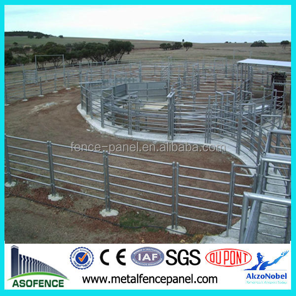meeting customers needs special cattle yard design