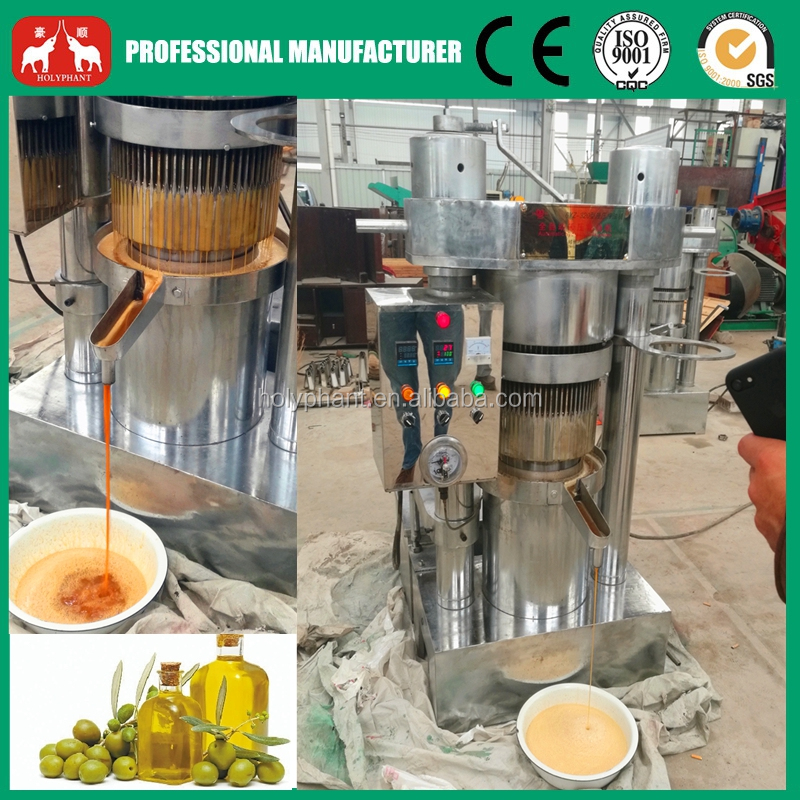 Small Hydraulic Olive Oil Press Machine 20-120kg/h