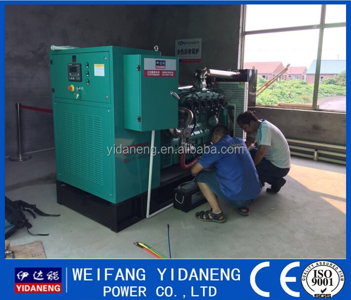 120kw Cow Dung Biogas plant Manufacture