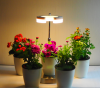 2016 new products 10w led plant grow light