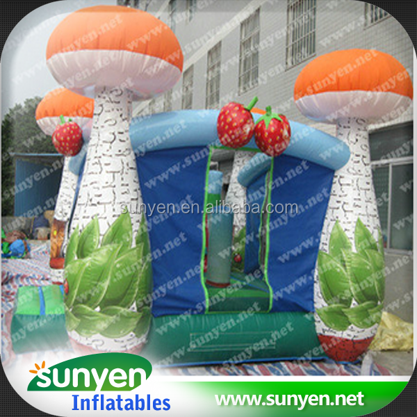 Creative Fruit Theme Inflatable Bouncer With Slide