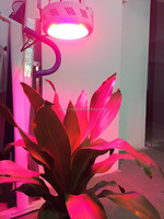 ebay best sellers hydroponics growing light system full spectrum 135W led grow lights/hydroponic supplies