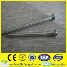 common wire nail iron nail all sizes factory price