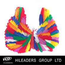 Craft Rainbow Feather Wings DS808