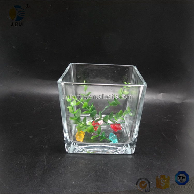 Large square shaped tissue culture jar/ clear glassware