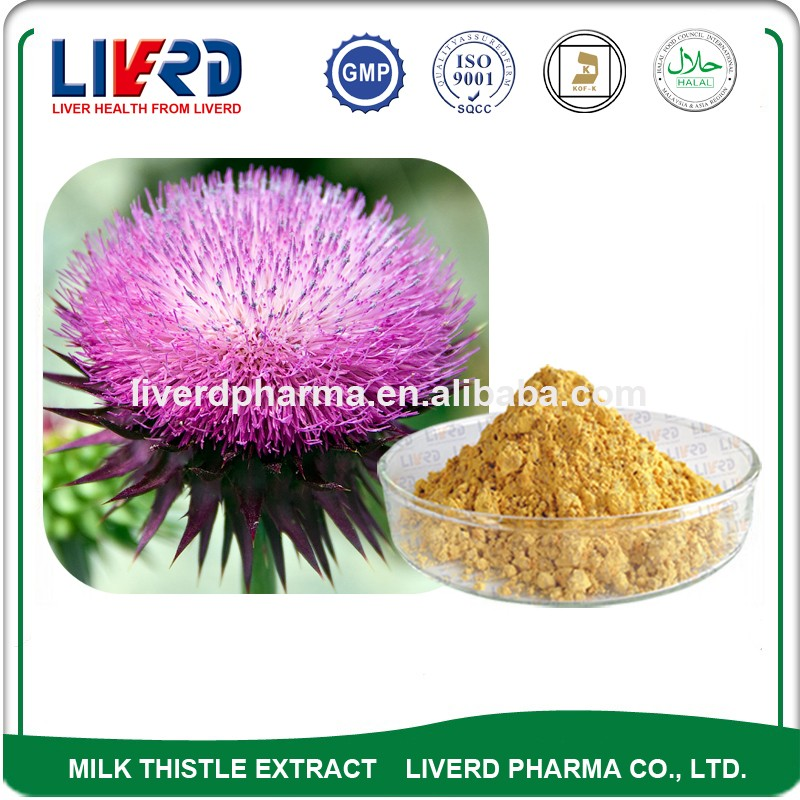 Raw Material Organic Milk Thistle Extract Powder with Dried Fruit