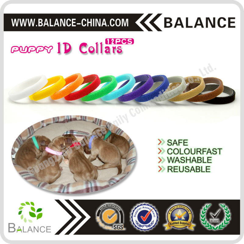 various color puppy collar soft nylon pet ID collar
