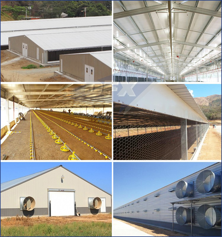 Fast Installed Chicken Farm Shed Prefab Poultry House