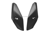 Carbon Upper Fairing for BMW S1000R 2014