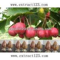 Manufacturer Natural Hawthorn Berry P.E 5%Flavones