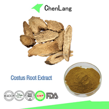 Best Price Costus Root Extract Powder in Herbal Plant Extract
