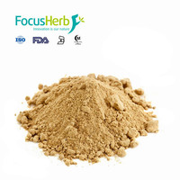 Focusherb Milk Thistle Extract Silymarin Powder