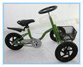 tadepole ride on toy car tricycle for kid 2wheel front TRD12