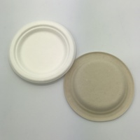 Biodegradable Sugarcane 6 inch Plate