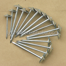 building materials,umbrella head roofing nail with rubber washer
