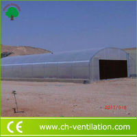 Chosen Professional Greenhouse Project Africa aquaponic greenhouse