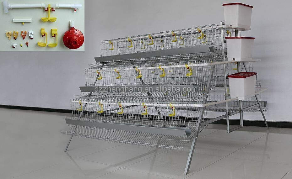 chicken cage/Automatic Layer Cage/poultry cage for sale (lydia : 0086.15965977837)