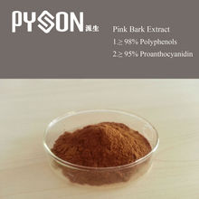 herbal 95% OPC 95% Polyphenols Pink Bark Extract