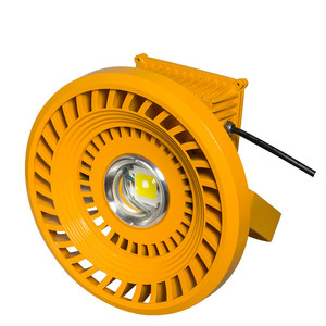 Round Distribution waterproof explosion-proof led light 30w Gas station light