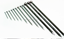 high quality common wire nail price per kg iron nail from china