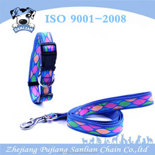 China supplier new pet products simple style dogs lead a set dog collars and leahes