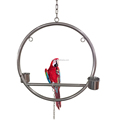 Stainless Steel Birds' Exhibit Stand Frame Parrot Playgyms Showing Stand