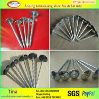 High quality galvanized roofing nails with umbrella head