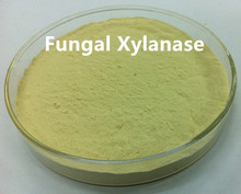 Food Grade Xylanase Enzyme