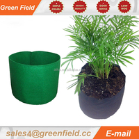 Artificial And Big Planter Pot Home