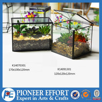 Square Retangle shaped plant clear glass terrarium holder for home decor
