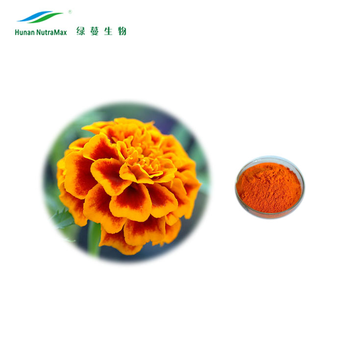Top Quality Calendula Officinalis Flower Extract Powder, Marigold Oil, Lutein Oil