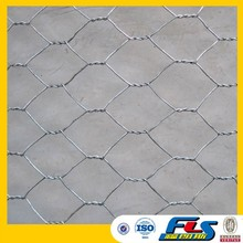 High Quality Plastering Hexagonal Wire Mesh/Chicken Wire Mesh