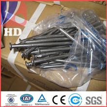 "1kg/bag 25kg/carton galvanized iron wire / common nail in 1.5"" 2"" 3"" 4"""