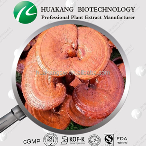 anti-tumor lingzhi extract, reishi mushroom extract,ganoderma lucidum extract from Japan reishi