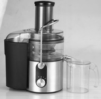 Stainless steel vegetable and fruit juicer extractor