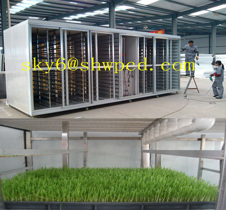 Automatic Horse Feed Sprouting Machine / Barley Growing Machine / barley cultivating machine