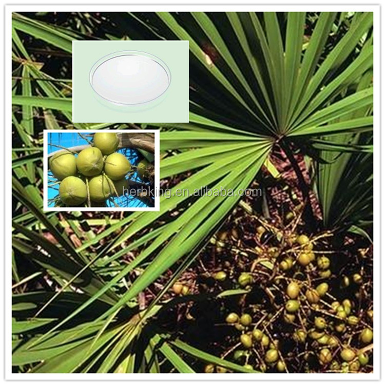 Plant extract Saw Palmetto Fruit Extract/Saw Palmetto Extract Powder