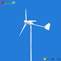 High efficient low start wind speed 1kw wind turbine aerogenerator
