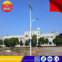 wind street light solar and wind power 30 years' factory