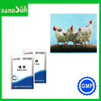 Poultry Medicine Veterinary Products For Poultry