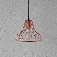 Metal pendant lamp,cage pendant light for mall