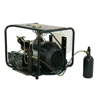 Portable small air compressor 300bar 4500psi pcp paintball with filter