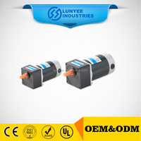 High torque low rpm electric gear motor dc 12v