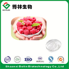 Natural Red Raspberry Extract 10:1 20:1 Powder for OEM Products