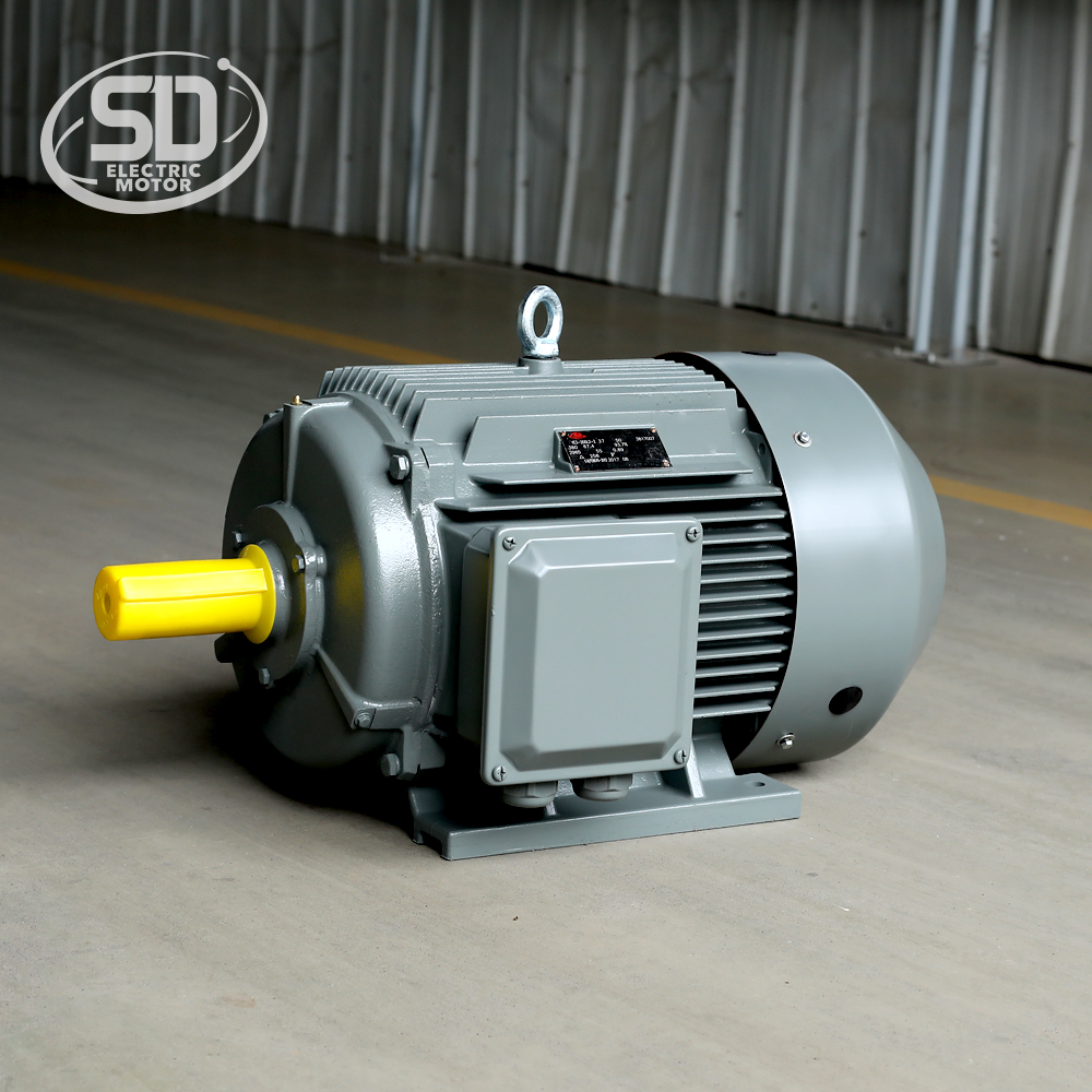 IE3 50HZ 60HZ 4 pole 30kw 40hp three phase electric motor