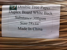 Long History 300gsm Duplex Board with Grey Back, Craft Paper in Sheet